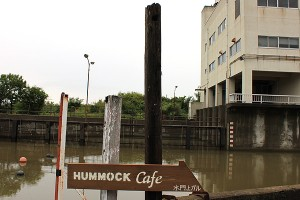 hummock-nakajima-003